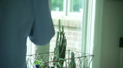 Cleaning window windex clean housework house work Stock Footage