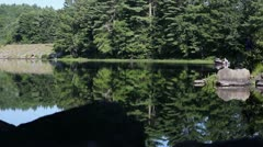 Fishing And Boating From Shore Stock Footage