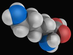 lysine molecule - stock illustration