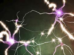 Hermosoluja ampumista, kuvitus Piirros