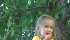 Child Picking, Eating Cherries Fruit from Cherry Tree in Orchard, Food, Children Stock Footage
