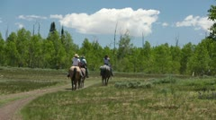 Family riding horses in mountain forest trail P HD 0338 Stock Footage