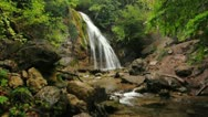 Waterfall in forest Stock Footage