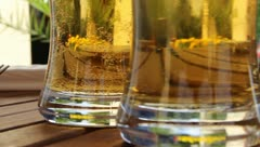 Holiday and Freetime Elements - German Beer and Bubbles - stock footage