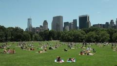 New York Central Park Sheep Meadow lawn tilt down 24P Stock Footage