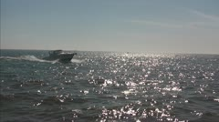 Cabin Cruiser Boat, Traveling into Channel Stock Footage