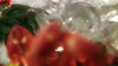 A crayfish party Stock Footage