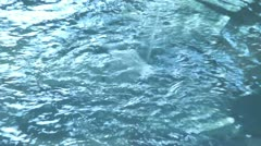 Water Jet - stock footage