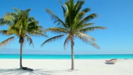 Stock Video Footage of Caribbean Tulum white sand beach with two palm trees and boat