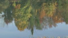 Washington State Kalama Parkland Lake - stock footage