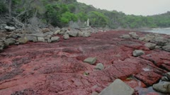 Slow pan right Bittangabee Bay NSW Australia Stock Footage