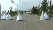 Stock Video Footage of Fashion parade of 7 brides