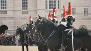 HorseGuards05 Stock Footage