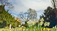 Spring is coming Stock Footage