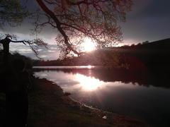 Bow Creek, River Dart, Devon, Iso-Britannia - Sun set Kuvituskuvat