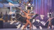 Carnival time! Happy people dance with costumes all day and night Stock Footage