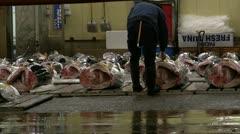 TsukijiFishMarket-PreAuction.MTS Stock Footage