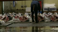 TsukijiFishMarket-PreAuction.MTS Stock Footage
