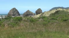 Oregon Coast in Spring with Wind - stock footage