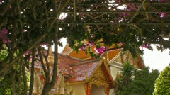 Flowers Hang Near the Temple - stock footage
