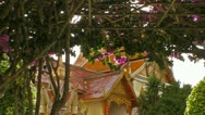Flowers Hang Near the Temple Stock Footage
