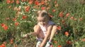 Child Playing, Smelling and Gathering Poppies in a Field of Poppies HD Footage