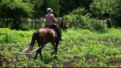 Ploughed and horse Stock Footage