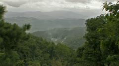 Landscape of Jungle Forest in Thailand - stock footage