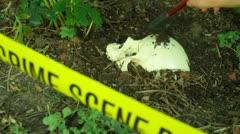 Oikeuslääketieteen ruumis kallo CSI tutkii rikospaikan Arkistovideo