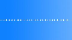 MockingBirdAtNightShort Sound Effect