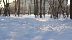 Sunny road in winter park Stock Footage