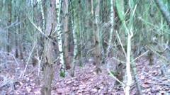 Forest People 19 Stock Footage