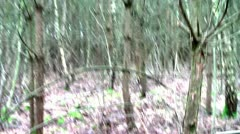 Forest People 12 Stock Footage