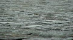 Raining on Cobblestones Stock Footage