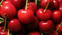 Cherries Stock Footage