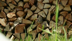 Wood stack close up drying in summer sun Stock Footage