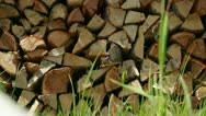 Stock Video Footage of Wood stack close up drying in summer sun