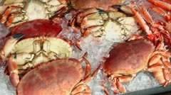 Many crabmeat and prawns lies in ice, shown in motion Stock Footage