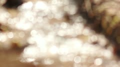 Sun bokeh reflections off river water in park Stock Footage