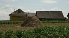 haystack in a kitchen garden - stock footage