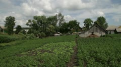 Rural kitchen garden Stock Footage