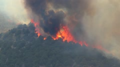 Huge Forest Fire Burning Trees on Mountain - stock footage