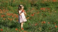 Child Playing, Smelling and Gathering Poppies in a Field of Poppies Footage