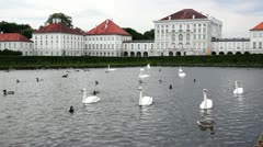Swans and geese on the pond. Nymphenburg Palace, Munich - stock footage