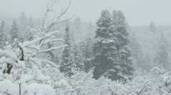 Stock Video Footage of Rocky Mountains in Winter