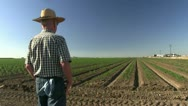 Farmer in field Stock Footage