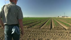 farmer in field - stock footage