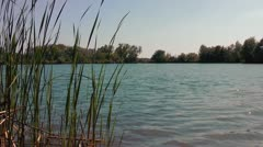 Water level on a pond Stock Footage