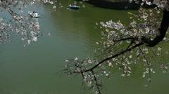 Chidorigafuchi in Tokyo Japan, Beauty Cherry Blossom, People Boat Ride Park Lake Stock Footage