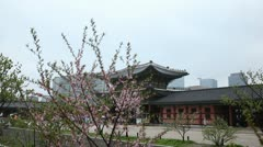 Seoul Geunjeongmun, Geunjeong Gate, Gyeongbokgung Palace, South Korea Stock Footage